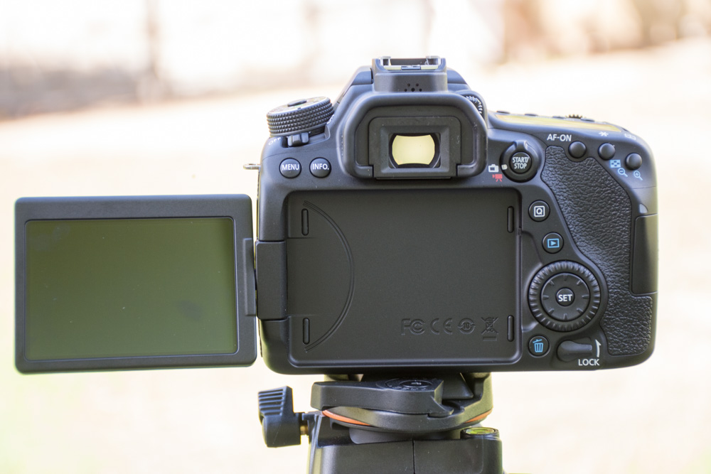 canon 80d review pictures